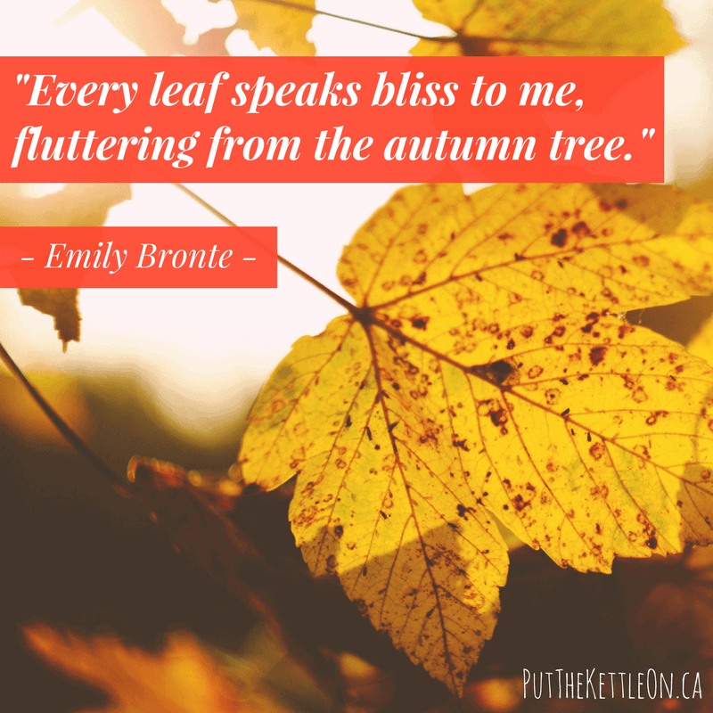 "Every leaf speaks bliss to me, fluttering from the autumn tree."" - Emily Bronte"