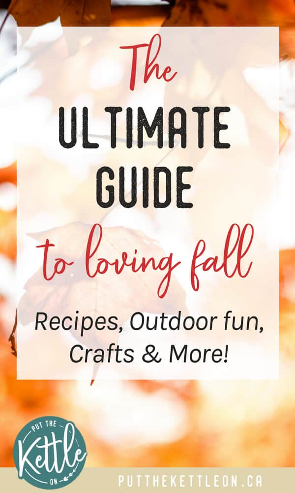 The Ultimate Guide to Loving Fall