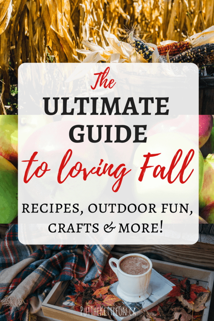 The Ultimate Fall Guide