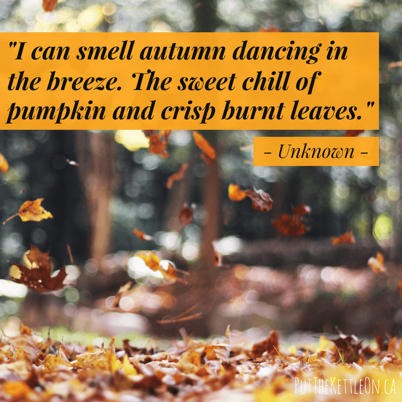 Fall quote - 'I can smell autumn dancing in the breeze. The sweet chill of pumpkin and crisp burnt leaves.' - unknown