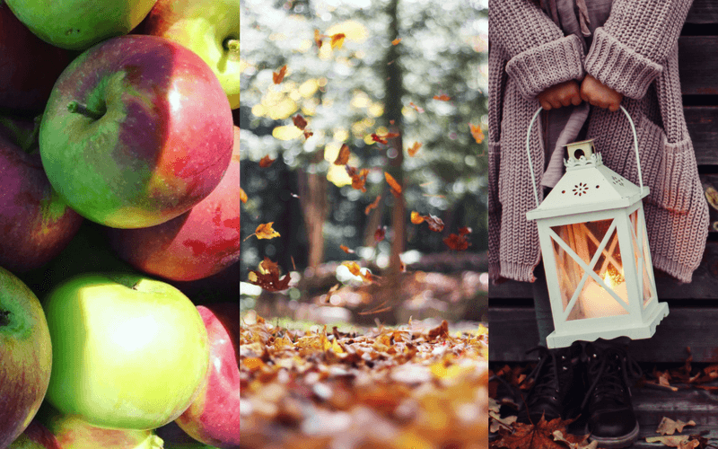 The Ultimate Guide to Loving Fall.