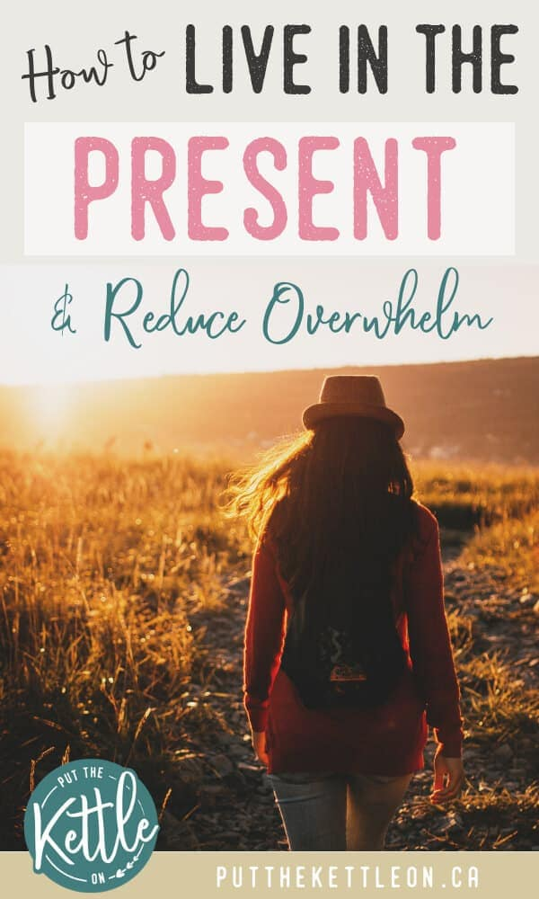 Woman standing in field and overlay text, How to Live in the Present and Reduce Overwhelm